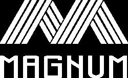 magnum-hotel.com